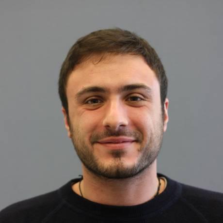 Lorenzo  Bina